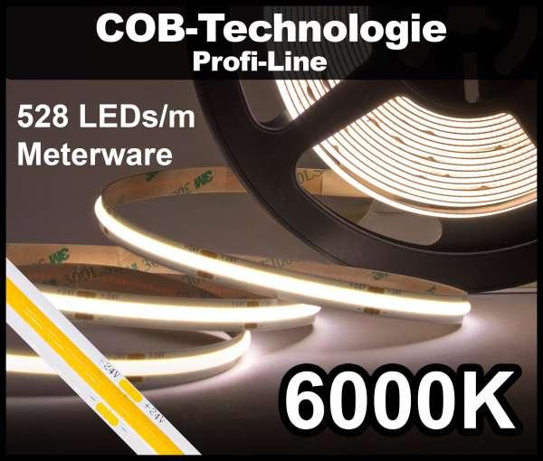 1m COB LED Strip PL 528 NEON-like 24V, 1420 lm/m bei 14W/m, kaltweiß (6000K), CRI>90 Streifen Flexband IP20