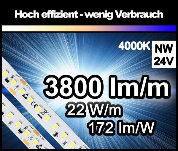 1m LED-Strip SMD2835 HE/CC, PL extrem hell mit 3800 lm/m bei nur 22W/m, 24V, neutralweiß 4000K, Konstantstrom-geregelt