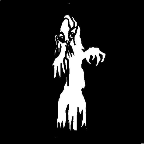 """D-Gobo """"Ghost 4"""" Metallgobo"""
