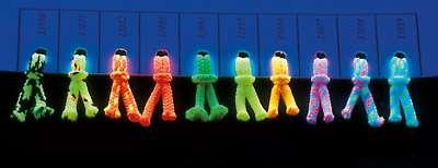 Musterkarte UV-Leuchtschnur