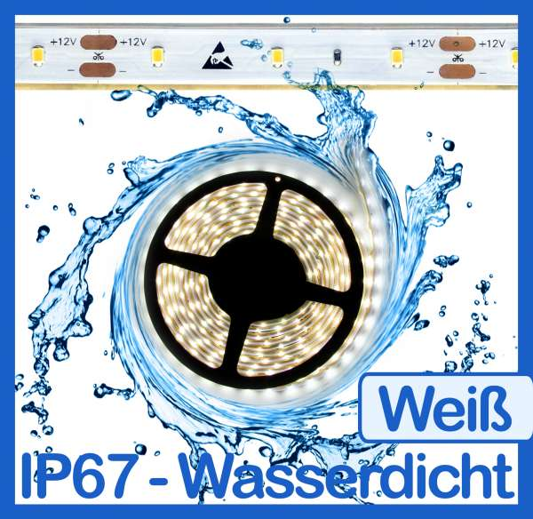 5m Wasserdicht SMD 2016 LED Strip kaltweiß (6000K) 12V Strips 4,8W/m Flexband IP67